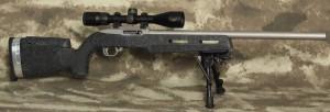 Clark Custom Ruger 10-22 Combatrifle.com