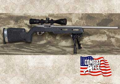 Picture of a Clark Custom Precision Ruger 10/22
